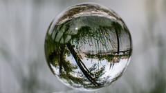 Donau // Mit der Kugel durch Regensburg (seyf\ART) Tags: town stadt refraction regensburg ratisbon crystalball glaskugel