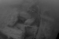 Plymouth-201605-JamesEaganLayne1-12-Wreckage-Average-BW (Tony J Gilbert) Tags: macro marine underwater plymouth diving scylla jameseaganlayne nikond300 handdeeps wwwdivingplymouthcom ceeking hilseapointrocks