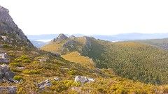 The Needles, Upper Florentine Valley, Tasmania (Phil_g_626) Tags: rainforest valley tasmania wilderness florentine theneedles southwestnationalpark lakegordon maydena gordonriverroad