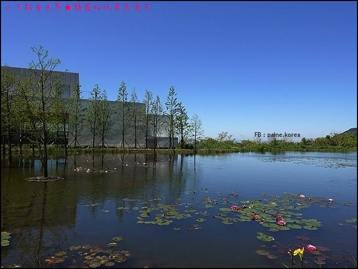 濟州本態博物館 (15).JPG