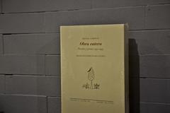 En torno a Basho (Casa de Amrica) Tags: madrid book cadenas leer libro autor obra lectura acto presentacin casadeamrica manuelrico rafaelcadenas lvarovalverde jordidoce antoniolpezortega homenajearafaelcadenas bashoyotrospoemas