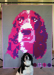 Bea and Bea-naners Quilt (Quiltachusetts - Heather Black) Tags: pink dog english modern grey purple quilt contemporary gray pixel quilting spaniel springer throw