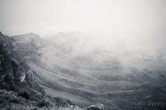 Cold (mattdwen) Tags: newzealand nz hawkesbay havelocknorth
