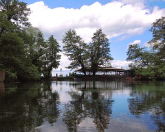 Macedonia (Struga-St Naum Springs) Cafe with beautiful reflections of trees