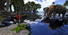 Tropical reflections (Gaea Oakleaf) Tags: beach sand tropical huts canoes gazebo vegetation lush sandy water itallstartswithasmile