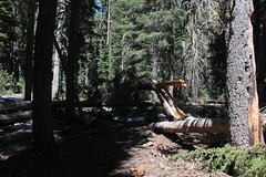 More dang trees across the trail (rozoneill) Tags: sky lake cold liza rock creek forest river spring elizabeth lakes fremont trail national wilderness rogue siskiyou winema trailhead isherwood notasha