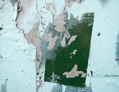green belt (albatz) Tags: abstract texture graffiti peeling paint