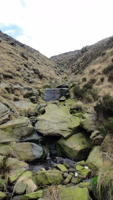 In Charnel Clough