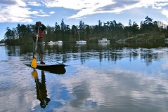 sup24 (vikapproved) Tags: up vancouver island stand whisper bc board paddle columbia victoria evergreen british paddling legend sup