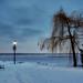 Saint Laurent River Bank in Winter