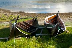 Fringer (estenvik) Tags: beach norway boat fjord boathouse boatshed fjre robt nordtrndelag naust trondheimsfjorden nordlandsbt fring ekne fjordsbt estenvik erikstenvik