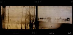 avant la scne finale (laboratoire de l'hydre) Tags: mer silhouette port gare decay gaz stalker bela rue brouillard usine ponton brume jete tarr chemine pologne abandonn tarkovski angelopoulos bestcapturesaoi