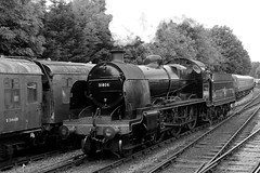 The Watercress Line-3 (johnaalex) Tags: england bw hampshire steam watercressline nikkor1635mmf4gedvr d800e