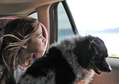 Jane and Molly (JasonCameron) Tags: dog window girl car hair photography utah photo kid northernutah child jane poodle spaniel cocker breeze cockapoo bearlake