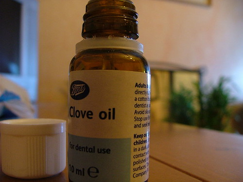 The Miracle of Cloves and Clove Oil – 5/17/12