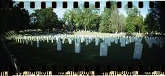 Fall In Line (Alexandria National Cemetery 3) - #139 (Patrick DB) Tags: grave alexandria virginia kodak cemetary tombstone sprocketrocket