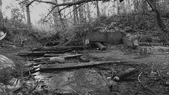 Bubbles in the Woods 2 (sammo371) Tags: blackandwhite bw forest woods stream surreal floating bubbles fluid artsy bubble brook liquid sinking centreville photoproject videoproject bigbubbles wafting giantbubbles babblingbrook sammo371 hugebubbles centrevillemichigan sturgisdam extremebubbles