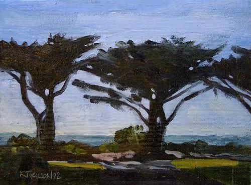Cypress Trees, Apollo Bay 6x8