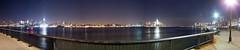 New York City Panorama Skyline (Nick Mulcock) Tags:
