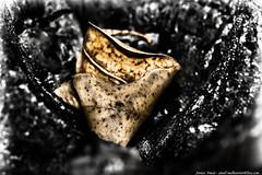 (Junior AmoJr) Tags: street color art sol arquitetura brasil photoshop canon sãopaulo chuva pb paisagem junior cor snapfish gettyimages lightroom t3i atibaia photostreet itsnoon gettyimagesandtheflickrcollection gettyimagesbrazil amojr junioramojr crowdart oliveirajunior riafestival