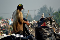 The Man behind the Garbage (Bhudiarto) Tags: morning red people brown sun white man black color tree green hat paper grey newspaper bucket garbage nikon iron day violet plastic archives land seedbed
