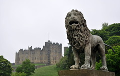 Alnwick Castle - Northumberland (Rob Lovesey) Tags: castle alnwick northumberland