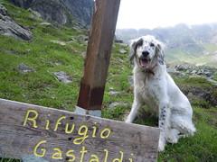 """Rifugio Gastaldi - www.rifugiogastaldi.com • <a style=""""font-size:0.8em;"""" href=""""http://www.flickr.com/photos/67097613@N06/7375647094/"""" target=""""_blank"""">View on Flickr</a>"""
