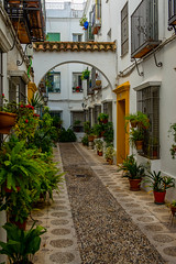 Cordoba's Hidden Beauty, Cordoba, 2015 (Travel by WestEndFoto) Tags: street travel andaluca spain flickr artificial queue cordoba mostinteresting es andalusia popular crdoba agenre fother streetscapephotography bsubject dgeography flickrtravelbywestendfoto flickrtravelcordoba queueparkep queueparktravel