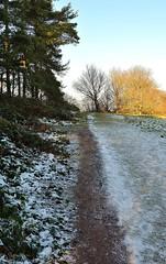 22689 (benbobjr) Tags: park uk greatbritain england english birmingham unitedkingdom britain gb british lordoftherings hobbit westmidlands beaconhill jrrtolkien lickeyhills birminghamuk midlands barntgreen theshire birminghamcitycouncil coftonhackett rednal lickeyhillscountrypark rosehillestate rednalhill cadburyfamily coftonhill birminghamsocietyforthepreservationofopenspaces lickeywarren pinfieldwood