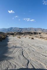 (_StrangeCharm) Tags: california ca travel vacation cali canon outdoors eos desert joshuatree parks roadtrip adventure explore highway1 national southerncalifornia canon6d