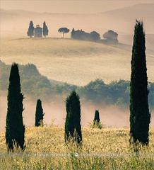 Guards of Vitaleta - Tuscany - Italy (~ Floydian ~ ) Tags: henkmeijer photography floydian italy tuscany tuscan cappelladellamadonnadivitaleta vitaleta guards guard guardians valdorcia sanquirico pienza sunrise morning dawn fog mist backlight chapel littlechurch cypress tree trees italian landscapes landscape leefilters icon iconic canon canoneos1dsmarkiii