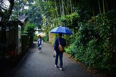 0983 (ken-wct) Tags: art nature japan nikon f14 sigma d750 30mm