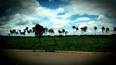 longe, muito longe... (luyunes) Tags: estrada campo caminho gois cidadedegois go070 motomaxx luciayunes