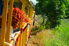 Ginger girl (radimersky) Tags: camera travel girl train ginger colorful europa europe day outdoor sony poland polska railway sunny cybershot rudy colourful dzień compact narrowgauge ♡ ruda kolor dziewczyna pociąg kolorowe kolejka pomorze kolejowe podróż słonecznie wąskotorowa żuławy dschx60