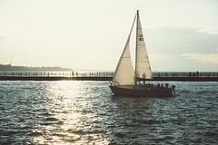 (wickedmartini) Tags: light summer silhouette sailboat landscape roc boat sailing greatlakes lakeontario rochesterny geneseeriver