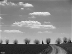 Photo Challenge 15/52 - Landscape (chando*) Tags: road trees sky church clouds blackwhite belgium belgique noiretblanc champs spire ciel arbres fields nuages paysage glise lanscape chemin clocher photochallenge brabantwallon plancenoit