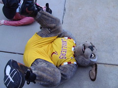 Beech Brook (16) (Moondog Mascot) Tags: 100k moondog cavaliers beechbrook 04222012 fleetfeetsports5k