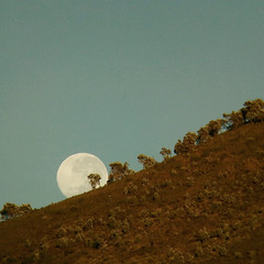 Supermoon setting over Lions Head (mallix) Tags: set capetown binoculars lionshead supermoon