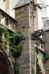 la cathédrale St Just et St Pasteur (HITSCHKO) Tags: france frankreich cathédrale aude narbonne minervois canaldumidi languedocroussillon hérault payscathare cloître saintjustetsaintpasteur minervoise katherer