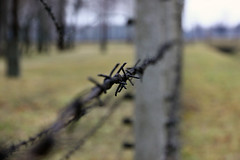 Auschwitz by j.guo., on Flickr