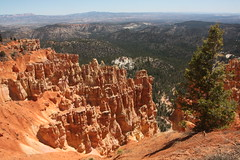 756 - UT - Bryce Canyon - Ponderosa Point and Canyon (scott185 (the original)) Tags: utah ut brycecanyon brycecanyonnationalpark ponderosapoint ponderosacanyon garfliedcounty elevation8904 elevation8766