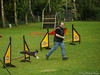 Agility for beginners 22.05.2012