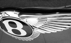 DSCF9536 (spreadthehappiness) Tags: b shadow blackandwhite distortion abstract reflection car closeup silver logo landscape grey 3d wings paint curves feathers automotive monotone highlights line badge straight bentley marque flyingb computerediting