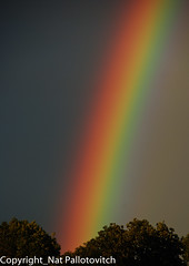Rainbow (Nat Pallotovitch (Adonicia)) Tags: normandie couleur orage arcenciel