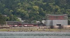 digging clams (i_love_japan_29) Tags: japan canon hiroshima miyajimaisland itsukushimashrine 日本 unescoworldheritage xsi 広島 宮島 厳島 日本三景