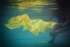 Toro (bSlaney) Tags: pool yellow brad swimming underwater ripple sony wave vignette toro slaney nex 5n