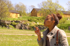 Put your lips together and blow (mollycaitlin) Tags: finland helsinki dandelion suomenlinna wishing makeawish