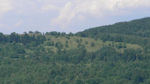 Duppauer Gebirge