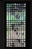 transparent door (HDH.Lucas) Tags: nature architecture landscape cannon gaze storytelling 아산