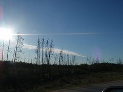 Slave Lake Sun Rise Series (Mr. Happy Face - Peace :)) Tags: morning sky sun canada colour clouds countryside am woodlands colorful skies shadows silhouettes alberta sunburst 2012 sunsetsunrise slavelake northernalberta mrhappyface earlyday stpaulslavelake